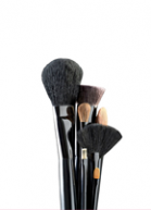 BRUSHES & KITS